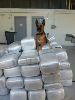 Nov. 20, 2013: A 29-year-old Houston man was arrested after more than a ton of marijuana was found in his pickup during a traffic stop on U.S. 59 in Sugar Land. Photo: FBCOSO