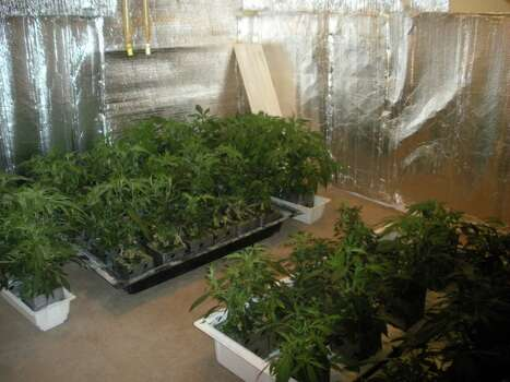 March 1, 2013: Fort Bend County Narcotics Task Force agents busted two marijuana growing operations in the Mission Bend subdivision, seizing plants and grow components with an estimated street value of over $1 million. Photo: Fort Bend County SO