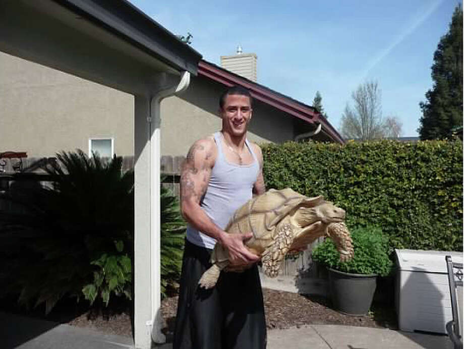 Kaepernick relaxing at home in Turlock with his 100-pound pet tortoise Sammy. Photo: Kaepernick Family, Courtesy / ONLINE_YES