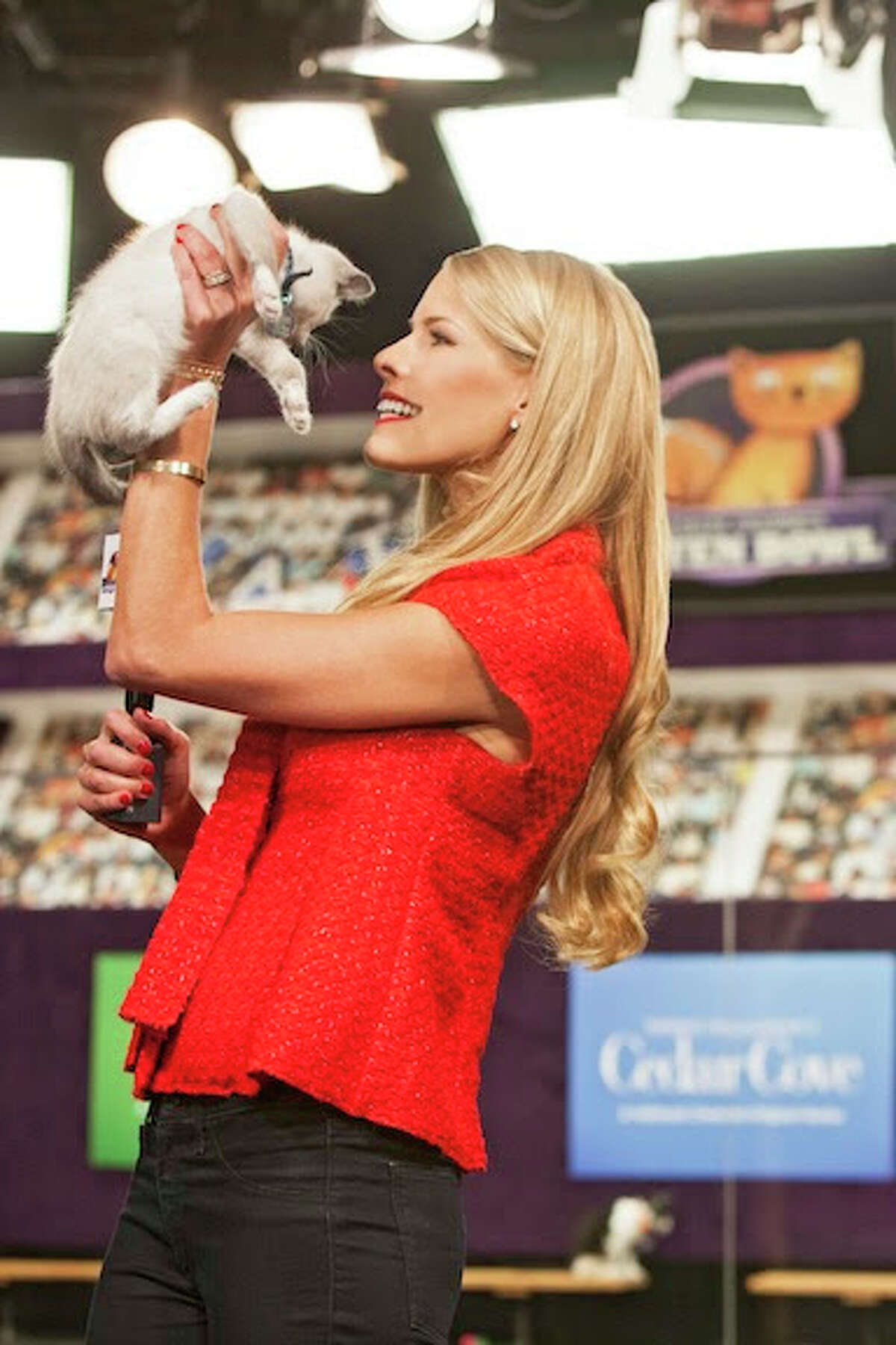 Beth Stern and kitties will make it a super Sunday for feline fans