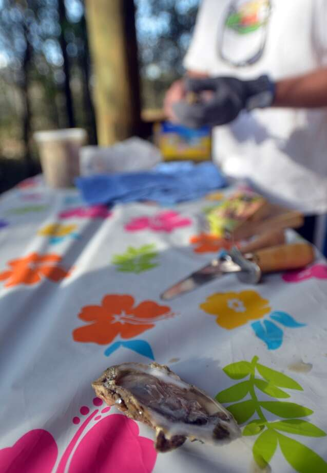 Chris Boone leads an oyster-shucking demonstration during Slow Food Beaumont's Oysterfest at Village Creek State Park in Lumberton on Jan. 25, 2013. Photo: Cat5