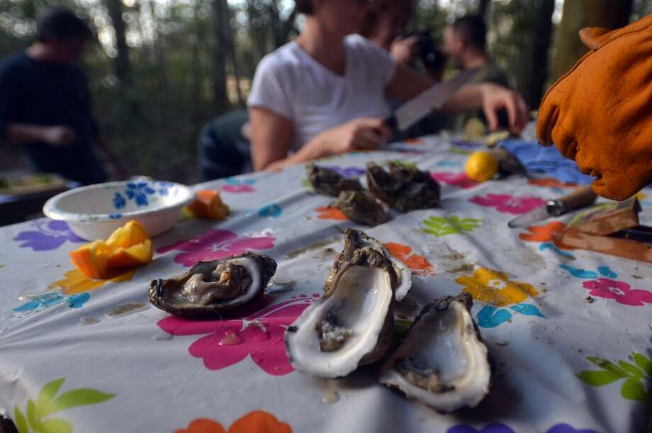 Rebecca Boone prepares fresh Gulf oysters at Slow Food Beaumont's Oysterfest at Village Creek State Park in Lumberton on Jan. 25, 2013. Photo: Cat5