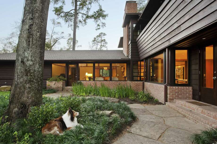 Wall-to-wall windows orient Ty and Lynn Kelly's River Oaks home toward the large backyard, as enjoyed by Lassie, their dog. Photo: Lawrence P. Lander / ONLINE_YES