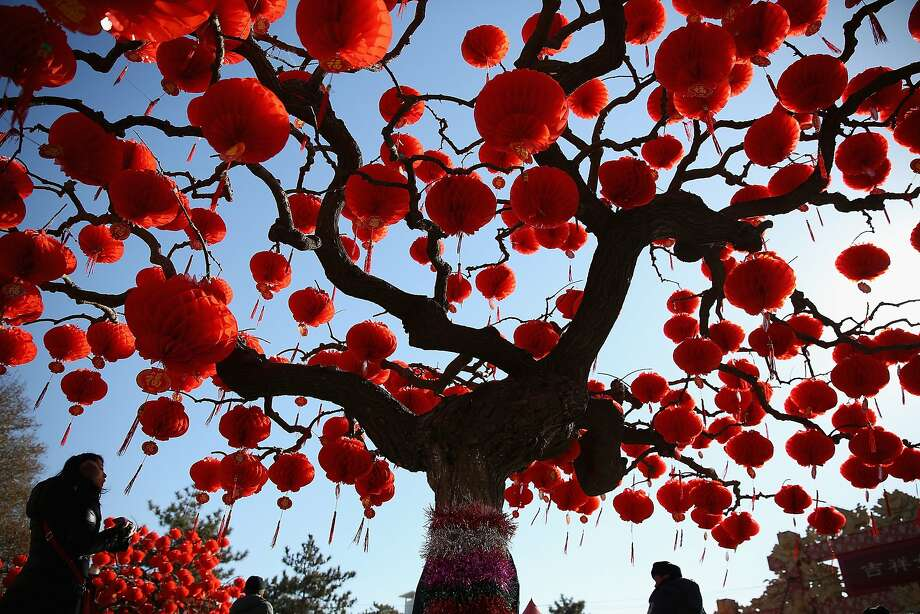 A tree blooms with red lanterns at the Spring Festival Temple Fair during celebrating Chinese Lunar New Year 