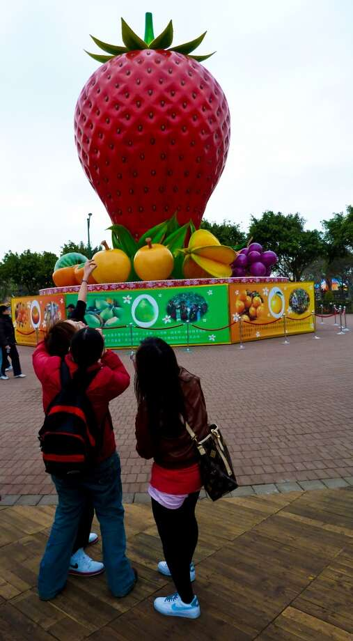 Attendees at the Taiwan Lantern Festival in 2011 admire a massive strawberry on the festival grounds in Miaoli, Taiwan. Photo: Spud Hilton, The Chronicle