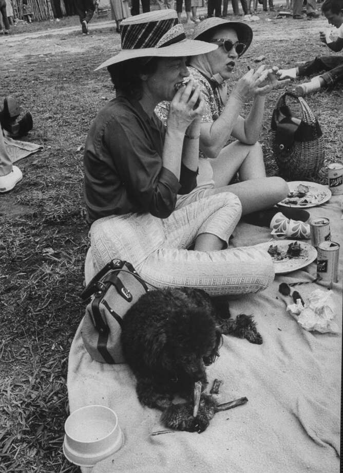 People and pets enjoying the food at a swamp barbecue in Florida, 1961. Photo: Lynn Pelham, Time & Life Pictures/Getty Image