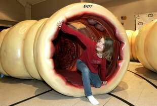 """A 40-foot-long informational model of a colon that young and old can crawl through is featured at New Summit Church, 1800 N.E. Independence Ave., in Lee's Summit, Mo., Dec. 14, 2013.  """"I touched it!"""" said eight-year-old Alisha Morris of Raytown to her aunt as she exited the feature."""