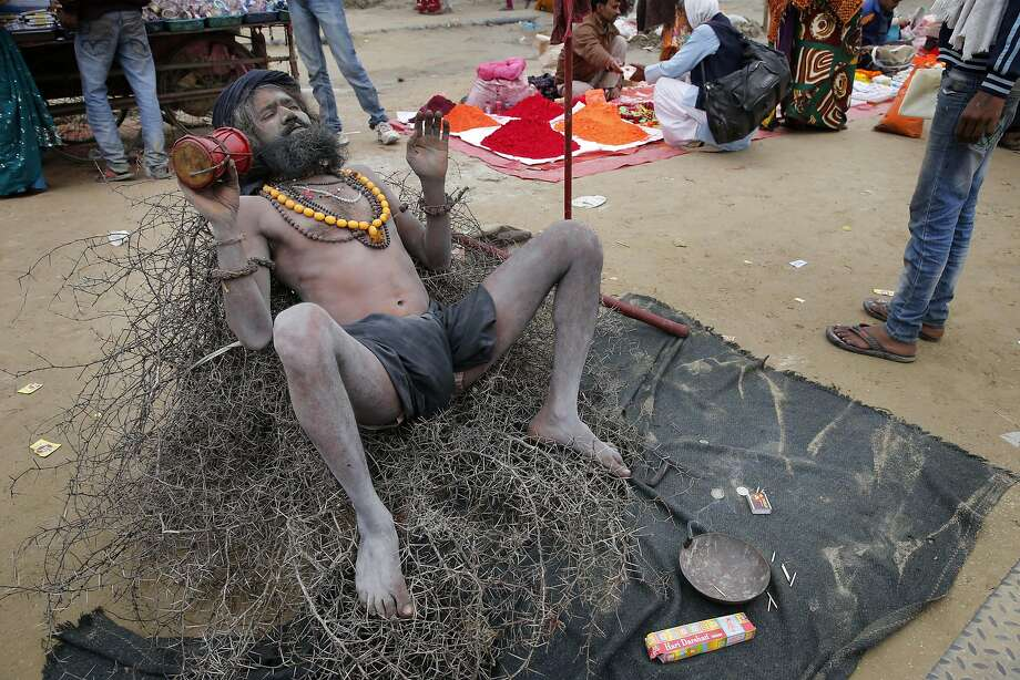 Bed of thorns: A Hindu sadhu ignores the pain as he lies on a prickly bramble during the annual month-long Magh Mela fair in Allahabad, India. Hundreds 