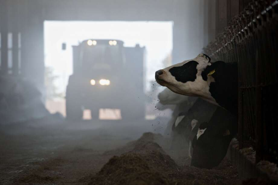 Illinois: A tractor pulls a cart of feed through a barn at Hunter Haven Dairy Farm in Pearl City, Illinois, U.S. The U.S. House passed and sent to the Senate a much-delayed bill to set agricultural policy for the next five years, as a coalition of rural Republicans and urban Democrats overcame objections about farm subsidies and food-stamp cuts. Photo: Daniel Acker, Bloomberg