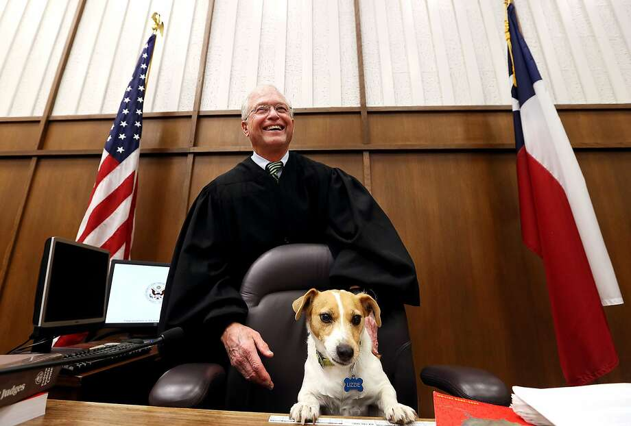 U.S. District Judge Robert Junell stands behind his nine-year-old Jack Russell Terrier named Lizzie inside of the courtroom Friday, Jan. 31, 2014, located at the Midland Federal Courthouse in Midland, Texas. Junell is declaring senior status, a classification that removes him from a dedicated case load in his Midland and Pecos region, which will take effect on Feb. 13, 2015. (AP Photo/The Odessa American, Edyta Blaszczyk) Photo: Edyta Blaszczyk, Associated Press