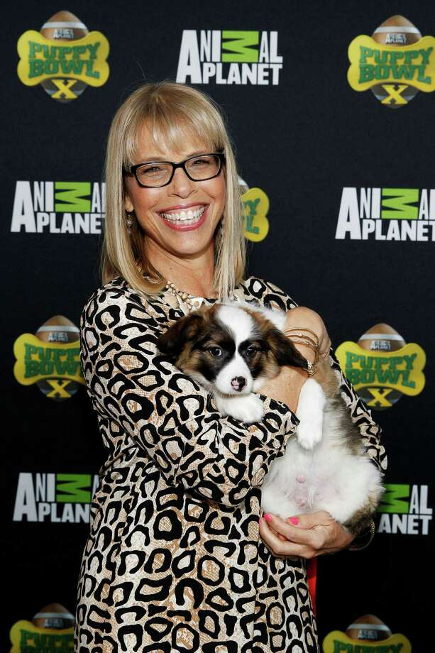 IMAGE DISTRIBUTED FOR DISCOVERY COMMUNICATIONS -  Animal Planet President Marjorie Kaplan attends Puppy Bowl X at the Discovery Times Square Experience in New York on Tuesday, Jan. 28, 2014. (Mark Von Holden/AP Images for Discovery Communications) Photo: Mark Von Holden, Associated Press / AP Images