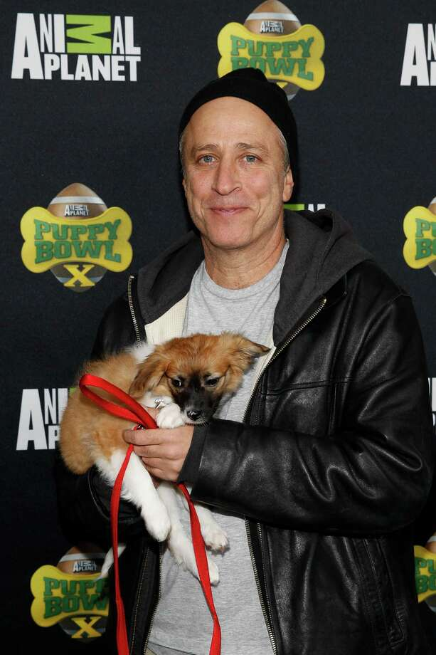 IMAGE DISTRIBUTED FOR DISCOVERY COMMUNICATIONS - TV Personality Jon Stewart attends the  Puppy Bowl X at the Discovery Times Square Experience in New York on Tuesday, Jan. 28, 2014. (Mark Von Holden/AP Images for Discovery Communications) Photo: Mark Von Holden, Associated Press / AP Images