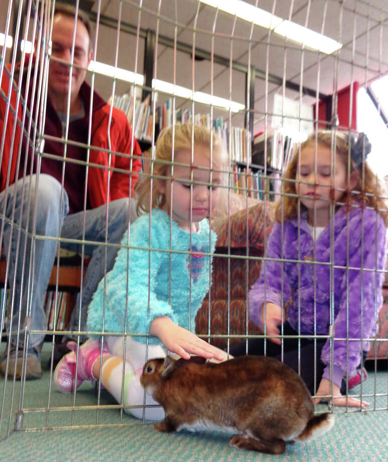 Sisters Meg Rowland, left, 4, and Allison Rowland, 7, of Fairfield, and their father Mark, were among the dozens of people who stopped by the Pequot Library on Saturday to meet the library's new reading ambassador bunny, who replaces Belle. Photo: Meg Barone / Fairfield Citizen contributed