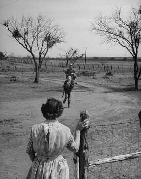 Author Fred Gipson with his son Mike who is running to his mother who is waiting at the gate after coon hunt, 1949. Photo: Thomas D. McAvoy, Time & Life Pictures/Getty Image