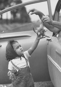 Child petting dead bird at dove hunt, 1961. Photo: Ralph Crane, Time & Life Pictures/Getty Image
