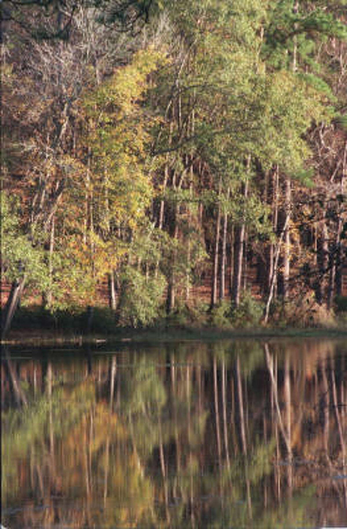 9. Huntsville State Park 237,220 visitors