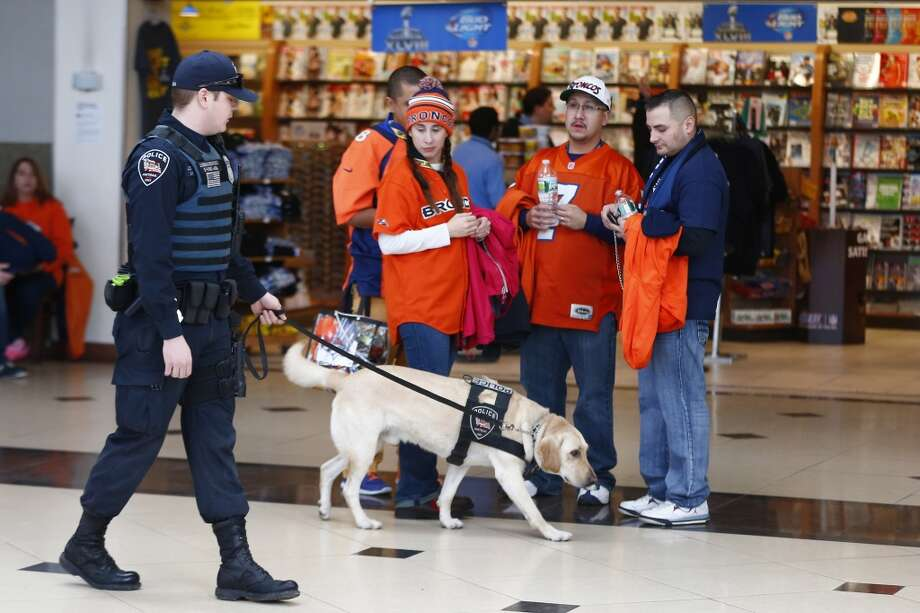 A police officer and his dog walk past football fans at the Secaucus Junction, Sunday, Feb. 2, 2014, in Secaucus, N.J. The Seattle Seahawks are scheduled to play the Denver Broncos in the NFL Super Bowl XLVIII football game on Sunday, earning MetLife Stadium in East Rutherford, N.J. (AP Photo/morry gash) Photo: Morry Gash, AP