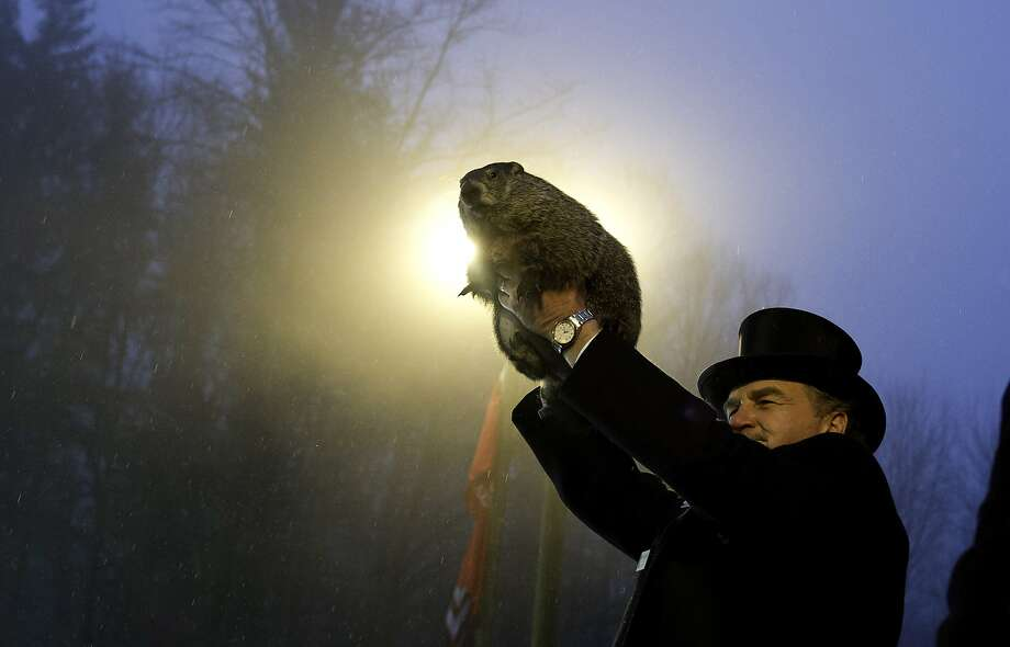 So predictable: Why does Punxsutawney Phil always see his shadow on Feb. 2, thus prognosticating six more weeks of winter? That Klieg light 