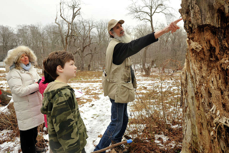 Ted Gilman, right, education specialist and naturalist, points out signs where insects have burrowed into a dead tree to Maura Walsh, left, and Henry Carter during the Insects in Winter Walk at the Audubon Center in Greenwich, Conn., on Sunday, Feb. 2, 2014. Photo: Jason Rearick / Stamford Advocate