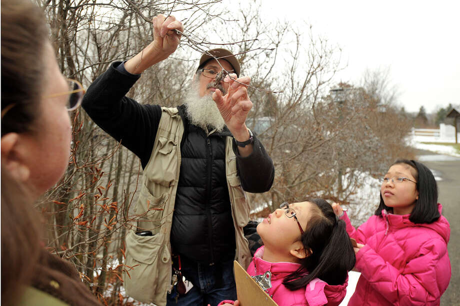 Mariah Walsh, right, and her sister, Kiara, look up as Ted Gilman, education specialist and naturalists, points out bagworm eggs that have attached to a branch during the Insects in Winter Walk at the Audubon Center in Greenwich, Conn., on Sunday, Feb. 2, 2014. Photo: Jason Rearick / Stamford Advocate
