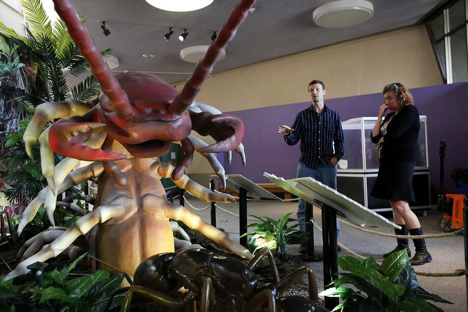 "Entomologist Peter Oboyski, top, goes over the animatronic centipede display with programs director Sue Guevara as part of the ""Xtreme Bugs"" exhibit at the Lawrence Hall of Science in Berkeley. Photo: Michael Short, The Chronicle"
