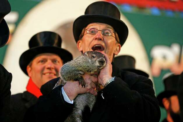 Punxsutawney Phil is held by Ron Ploucha after emerging from his burrow Sunday, Feb. 2, 2014, on Gobblers Knob in Punxsutawney, Pa., to see his shadow and forecast six more weeks of winter weather. The prediction this year fell on the same day as Super Bowl Sunday.  (AP Photo/Gene J. Puskar) ORG XMIT: PAGP101 Photo: Gene J. Puskar, AP / AP