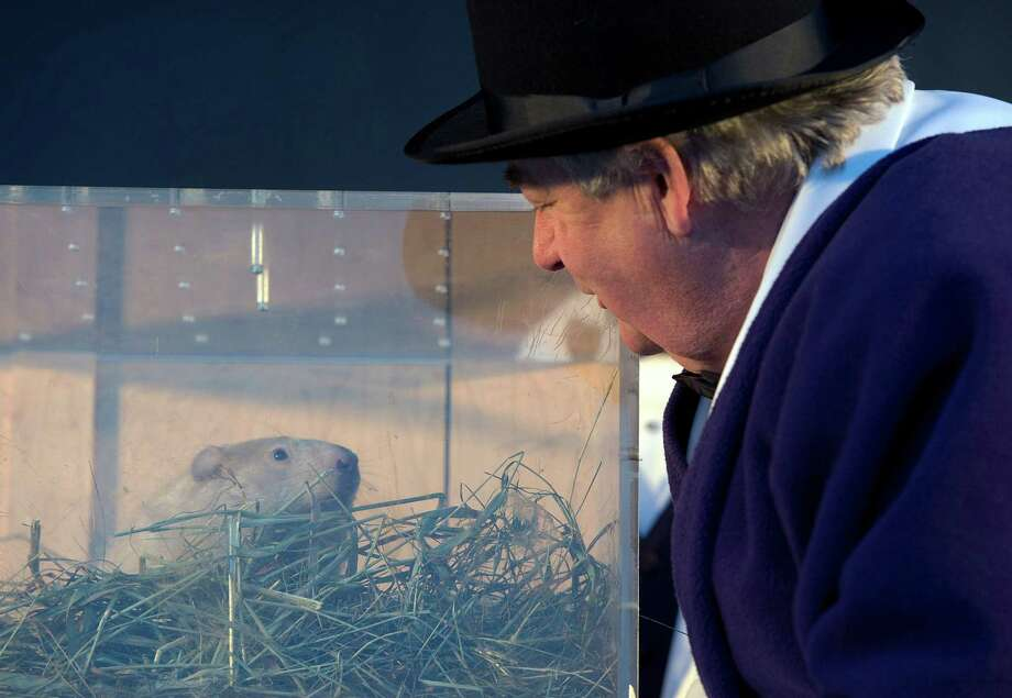 Wiarton, Ontario, Mayor John Close listens to groundhog Wiarton Willie's weather prediction in Wiarton on Sunday, Feb. 2, 2014. The groundhog prognosticator predicted 6 more weeks of winter. (AP Photo/The Canadian Press,Frank Gunn) ORG XMIT: FNG101 Photo: Frank Gunn, AP / The Canadian Press