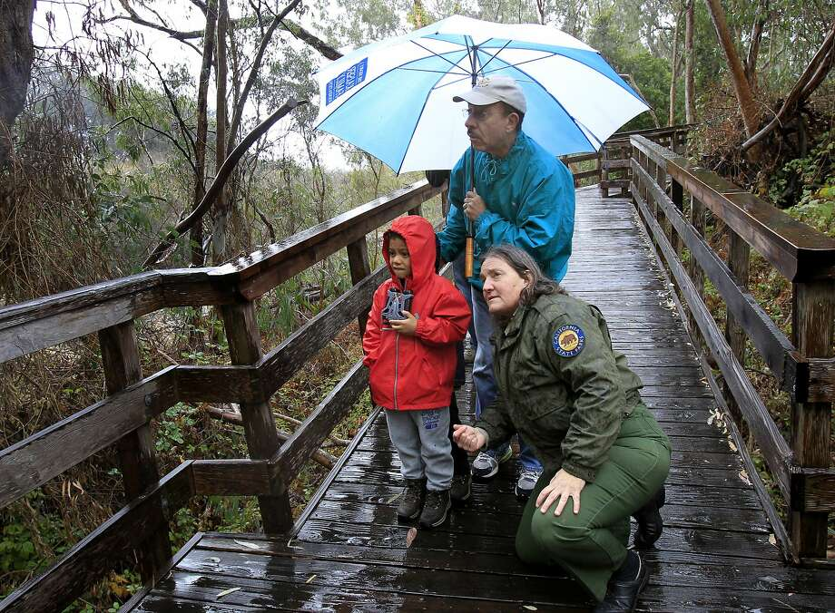 Park worker Martha Nitzberg assists the Strait family from Oakland while they look at monarch butterflies at Natural Bridges State Beach in Santa Cruz, which has seen an uptick in wintering butterflies this year. Photo: Brant Ward, The Chronicle