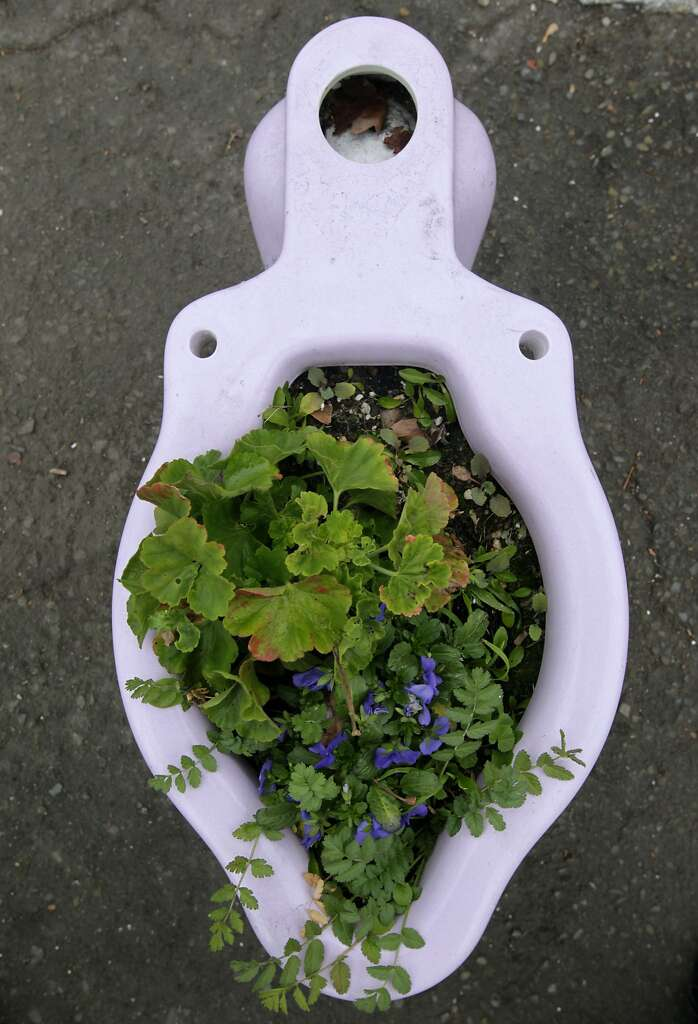 Toilet Bowls Are Converted To Planters At Ohmega Salvage In Berkeley Calif On Wednesday