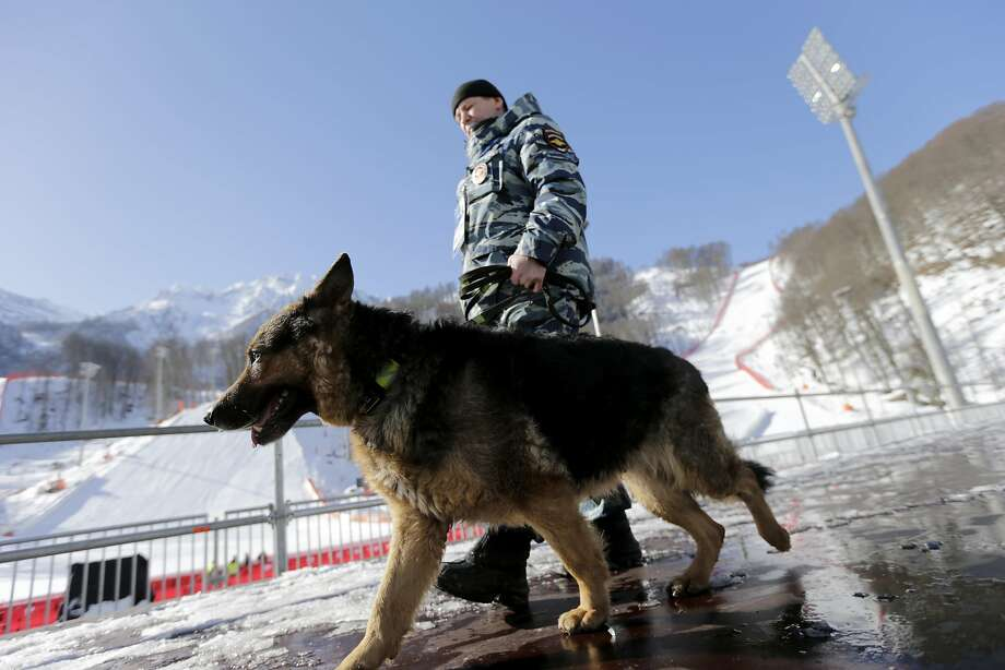 A Russian security forces K-9 officer patrols with his dog near the finish area of the Alpine ski course ahead of the 2014 Sochi Winter Olympics, Tuesday, Feb. 4, 2014, in Krasnaya Polyana, Russia. (AP Photo/Gero Breloer) Photo: Gero Breloer, Associated Press