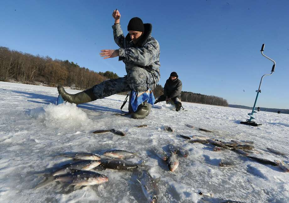 A bounty of small fry lies on the ice after a day of ice fishing near the Belarus village of Pilnitsa. Photo: Viktor Drachev, AFP/Getty Images