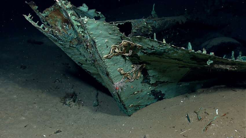 While most of the ship's wood has long since disintegrated, copper that sheathed the hull beneath the waterline as a protection against marine-boring organisms remains, leaving a copper shell retaining the form of the ship. The copper has turned green due to oxidation and chemical processes over more than a century on the seafloor. Oxidized copper sheathing and possible draft marks are visible on the bow of the ship. (Credit: NOAA Okeanos Explorer Program.)