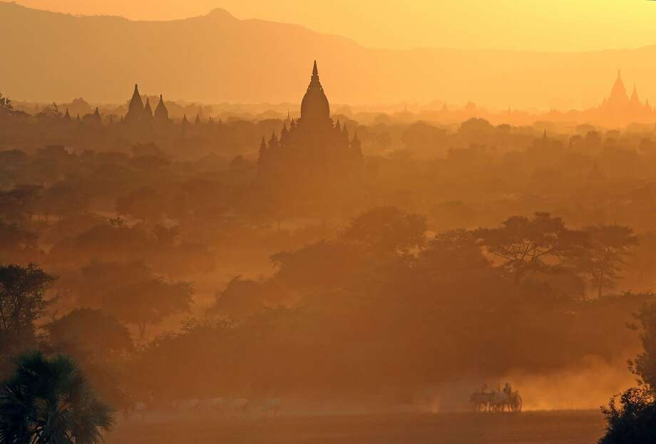 Rush hour: A cattle-drawn cart passes by ancient pagodas in Bagan, Myanmar. Photo: Ye Aung Thu, AFP/Getty Images
