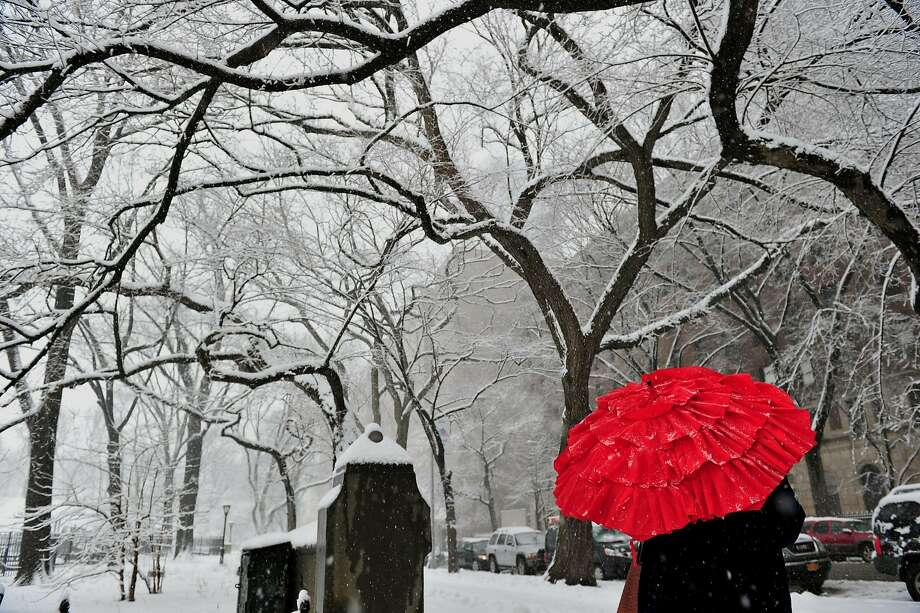 New York in the snow: A bright umbrella on Fifth Avenue contrasts with the monotone cityscape at an entrance to Central Park in Manhattan. Photo: Stan Honda, AFP/Getty Images