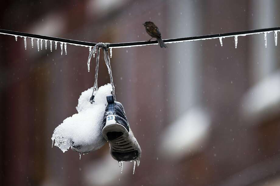 Ice snaps Pa. power lines:Ice-covered sneakers hang on a utility line following freezing rain in Philadelphia. Icy conditions knocked out power to more than 200,000 electric customers in southeastern Pennsylvania. Photo: Matt Rourke, Associated Press