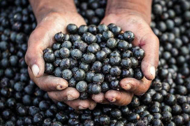 "Açaí (ah-SIGH-eee): A berry-like fruit that's commonly touted as a super food because of its antioxidants. Audio: Click here to hear the term ""Açaí."" Photo: Paulo Neves De Oliveira Junior - Brazilian Photographer, Getty Images/Flickr Open"