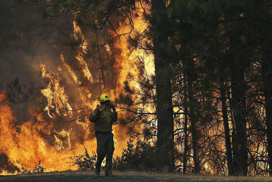 Firefighter A.J. Tevis watches the flames of the Rim Fire burn near Yosemite National Park in August. The House has approved a bill that speeds logging of trees burned in the massive wildland blaze. Photo: Jae C. Hong, Associated Press