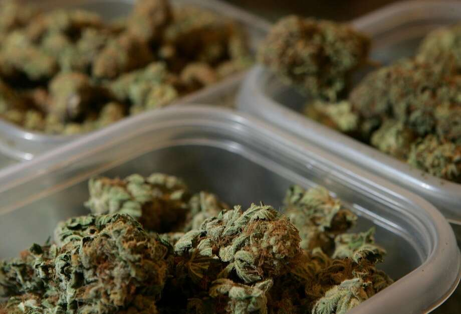 "Promise of big tax revenues from sales of legal pot appears to be … too low.  An NBC survey of 18 pot shops in Colorado put the first month of taxes that will go into state coffers from those stores at $1.24 million. The total number must be much higher since there are 35 stores currently licensed to sell legal weed. As the Today Show reported, ""… some of those sharing data had only sold recreational pot for four days due to complications with obtaining their state and local licenses.  ""In a back-of-the-napkin calculation, those who shared the data say they figure February's tax collections in Colorado likely will exceed a quarter of a million dollars a day, putting it on pace to near $100 million annually."" Photo: Justin Sullivan, Getty Images"