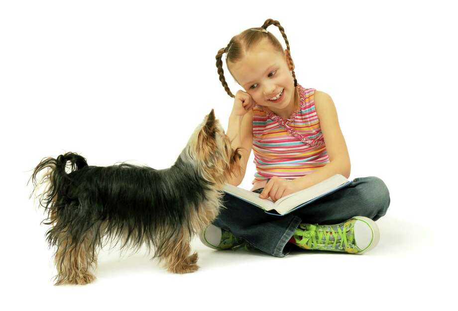 A four-legged resource to improve your child's enjoyment of reading could be as close as the end of your leash. Across America, children are experiencing the benefits of reading to dogs, and improvement can be seen after a few months of reading aloud for just 20 minutes a week.  (Fotolia) / Shmel - Fotolia