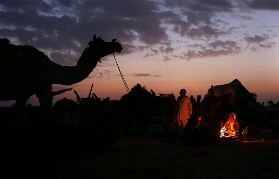 Camel herders warm themselvesat a campfire at the annual cattle fair in Nagaur,  Indian state of Rajasthan. More than 70,000 cows, bulls, camels and horses are expected to be sold at the eight-day fair. Photo: Rajesh Kumar Singh, Associated Press