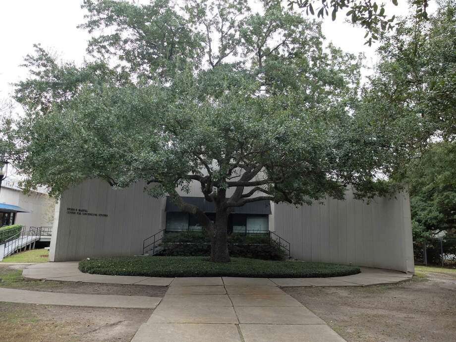Andy Warhol helped plant the oak tree outside the Martel Center at Rice University, which originally housed the Rice Institute of Art.  Rice say the building will be demolished in what faculty say is an insult to the Menils, Houston art icons who built it. Photo: Molly Glentzer