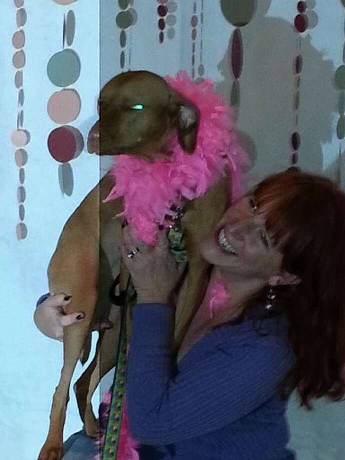 At the Must Love Pets Happy Hour, the photo booth - complete with costumes and props - was a popular attraction. But of course, dogs don't make great models. Karen Miller and her uncooperative dog Lucy. Photo: Emily Spicer, San Antonio Express-News