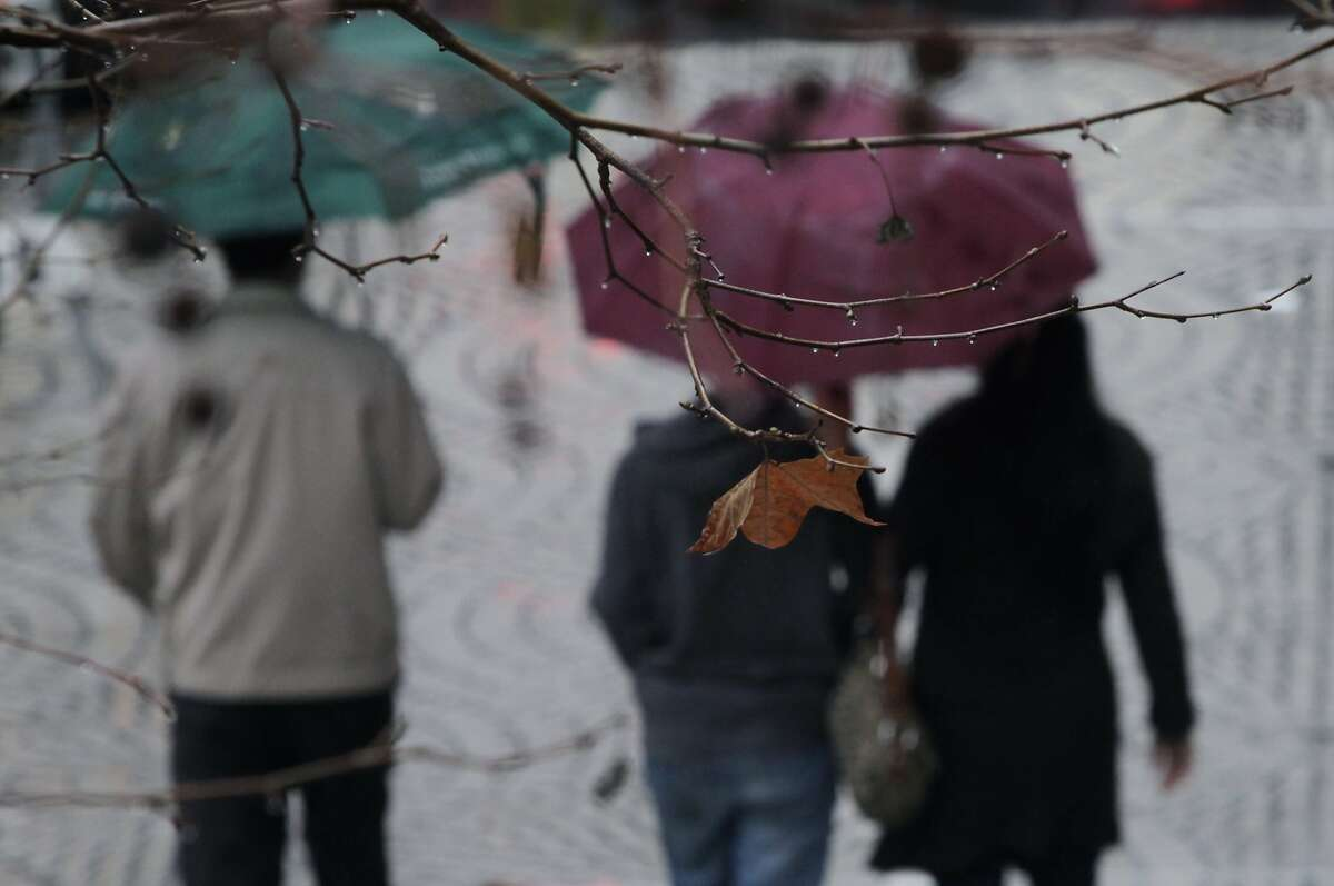 Shoppers carry umbrellas in the rain near the Embarcadero Center in San Francisco, Calif. on Saturday, Feb. 8, 2014. The Bay Area is getting doused this weekend in one of the biggest storms in over a year.