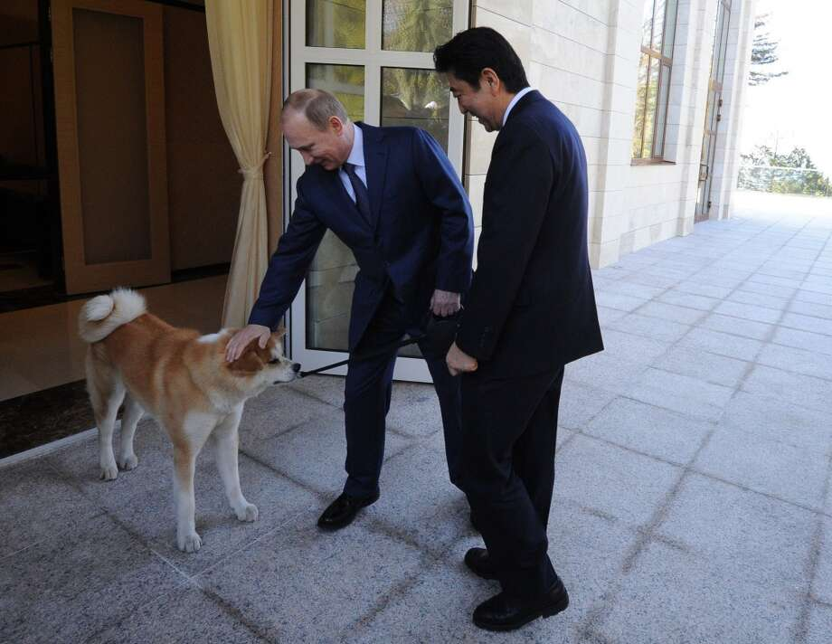 Russia's President Vladimir Putin presents his dog 'Yume' to Japanese Prime Minister Shinzo Abe at the Bocharov Ruchei residence in Sochi, on February 8, 2014. AFP PHOTO / RIA-NOVOSTI / POOL / Mikhail KlimentievMIKHAIL KLIMENTIEV/AFP/Getty Images Photo: AFP/Getty Images