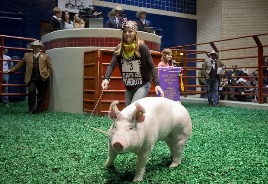 Claire McCormick, 13, of Canyon, Texas, shows her grand champion barrow at the sale of champions at the Fort Worth Stock Show on Saturday, Feb. 8, 2014, in Fort Worth, Texas. (AP Photo/Fort Worth Star-Telegram, Joyce Marshall) MAGS OUT (FORT WORTH WEEKLY, 360 WEST); INTERNET OUT Photo: Joyce Marshall, Associated Press