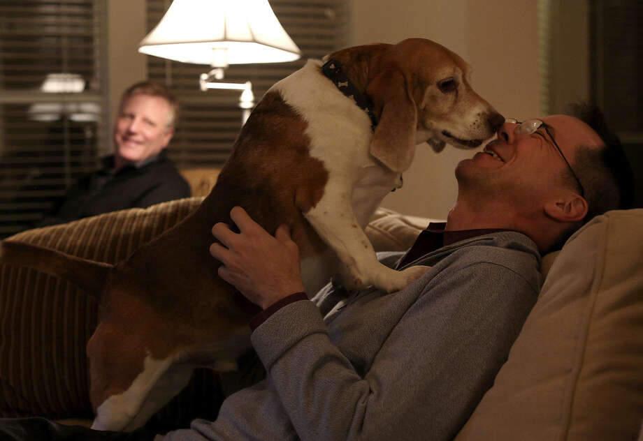 Victor Holmes plays with beagle Jake as Mark Phariss watches at their Plano home. The couple, with DeLeon and Dimetman, have filed a lawsuit challenging Texas' same-sex marriage ban. / San Antonio Express-News