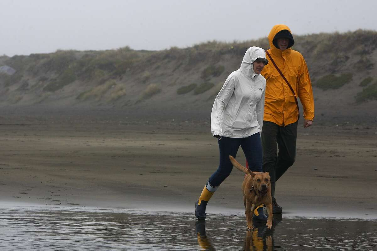 Nicole Infiesta (left) and David Chambers (right) brave the wet weather to take their dog, Bucket, for a walk at Ocean Beach on February 9, 2014 in San Francisco, Calif. The pair drove from the Mission District in the rain to take their nearly 10-year-old dog out for a good time.