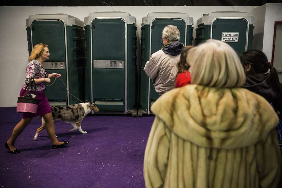 NEW YORK, NY - FEBRUARY 10:  People wait in line for the bathroom during the 138th annual Westminster Dog Show at the Piers 92/94 on February 10, 2014 in New York City. The annual dog show showcases the best dogs from around world for the next two days in New York. Photo: Andrew Burton, Getty Images / 2014 Getty Images