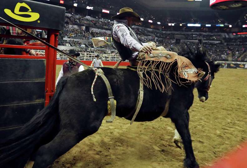 Samuel Kelts, of Millarville, AB, competes in the saddle bronc riding event during the San Antonio S