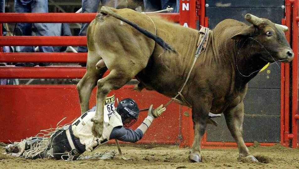 Joe Frost, of Randlett, UT, is thrown off his bull during the bull riding event at the San Antonio S